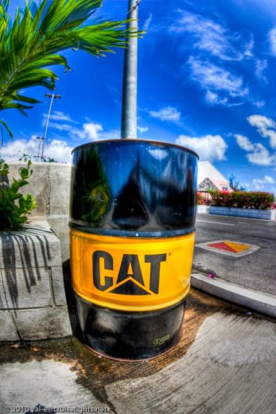 CAT!!