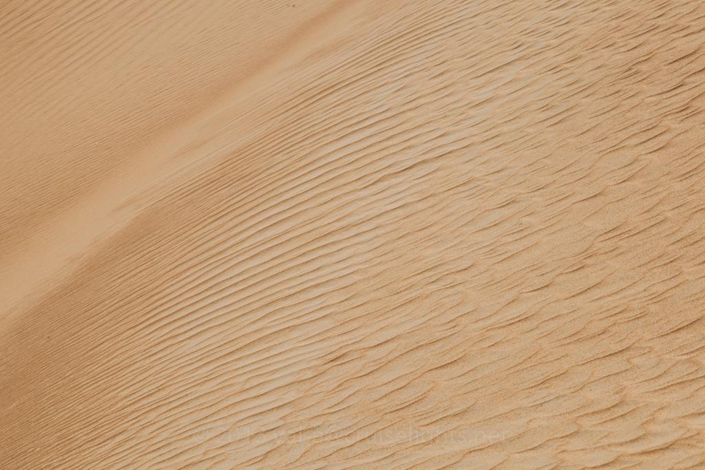 dune_bashing_015_20130302-img_2747