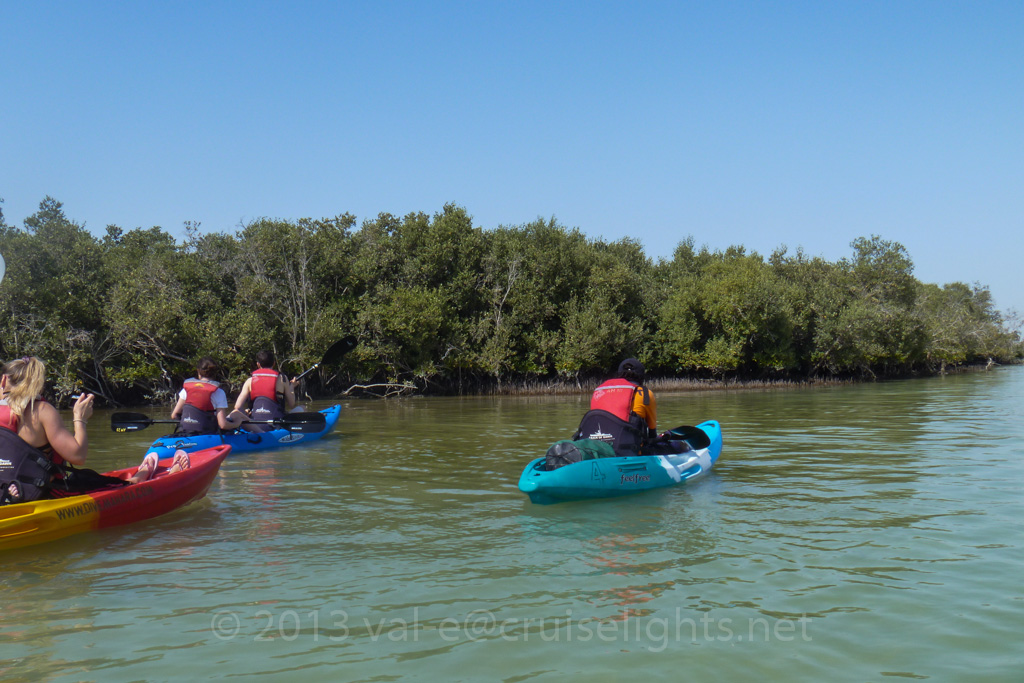 mangroventour_002_20130307-p1020132